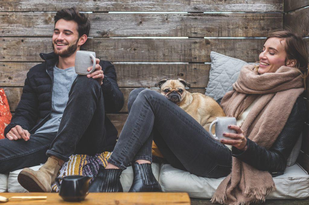 Можно ли отправиться в отпуск с кошкой или собакой?