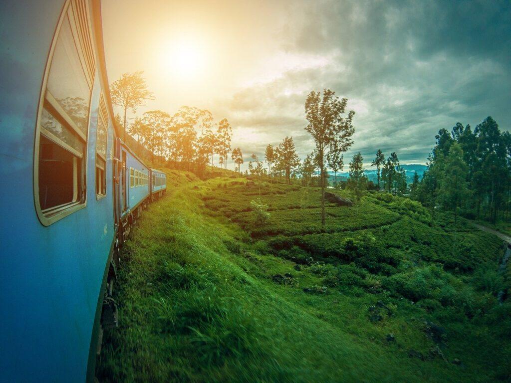Шри Ланка отдых